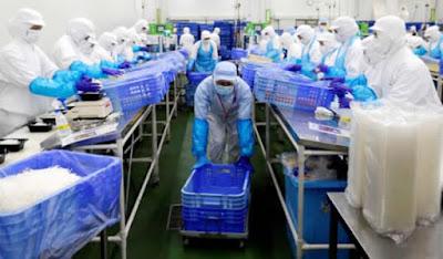trabalhadores estrangeiros qualificados