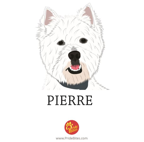 PrideBites did a fabulous job on Pierre's FREE drawing