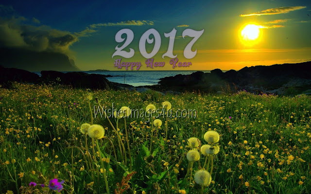 New year 2017 Beautiful Nature Desktop Background Download Free