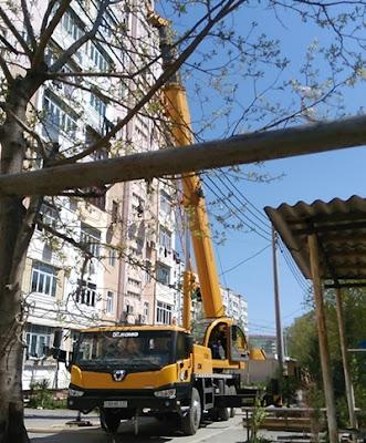 crane photography