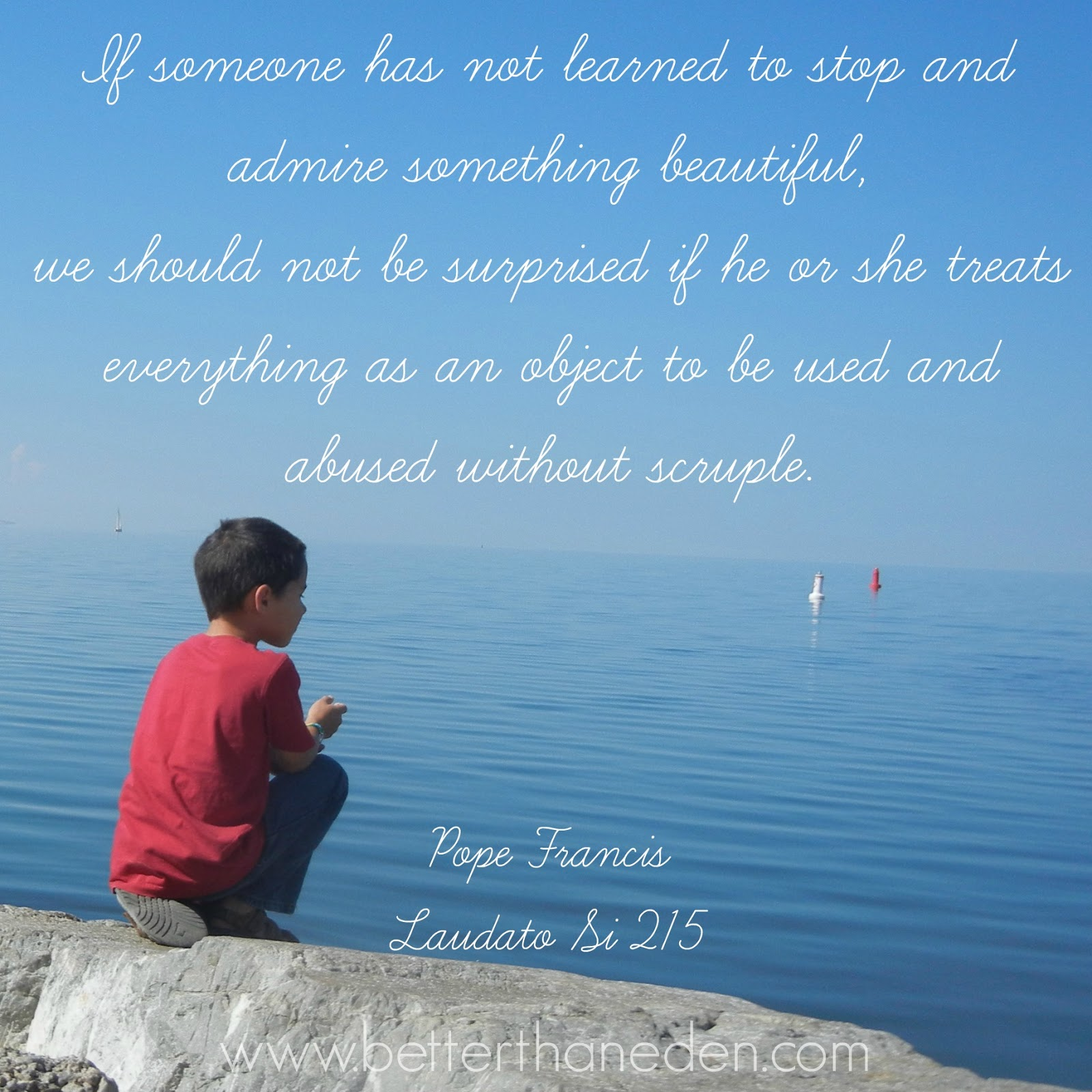 The Quotes Im Loving From Laudato Si Mary Haseltine