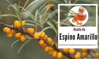 Aceite de Espino Amarillo en listado de aceites y esencias para Aromaterapia