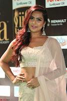 Prajna Actress in backless Cream Choli and transparent saree at IIFA Utsavam Awards 2017 0041.JPG