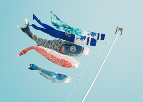 Picture of still kites.