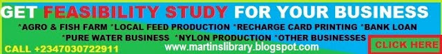 FEASIBILITY STUDY FROM MARTINS LIBRARY