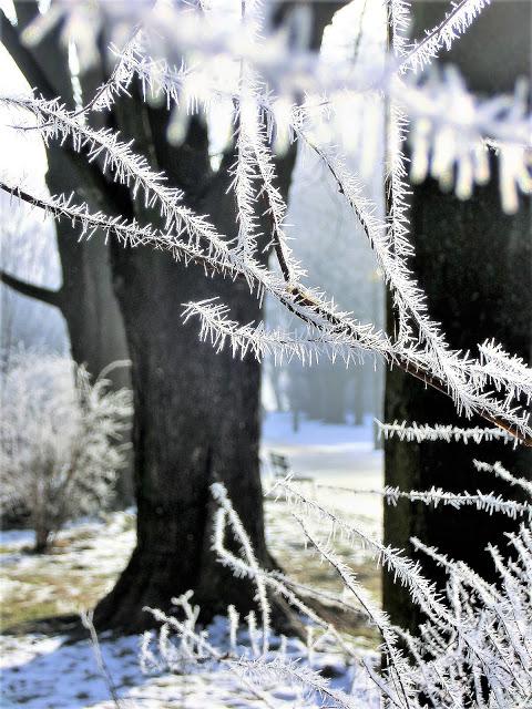 Www Wiersze Wycieczki Wspomnienia Wiersz O Zimie Dla Dzieci