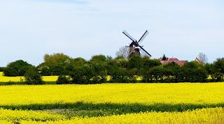 Landwirtschaft in Fehmarn