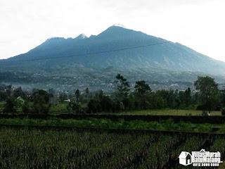 Villa Stroberi Batu Malang