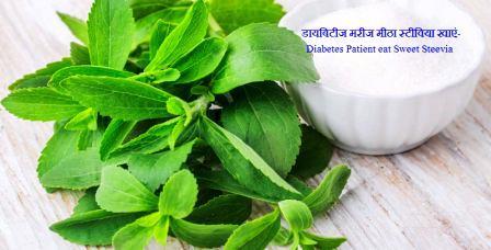 डायबिटीज मरीज मीठा स्टीविया खाएं-Diabetes Patient eat Sweet Steevia