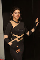 Pranitha Subhash in a skin tight backless brown gown at 64th Jio Filmfare Awards South ~  Exclusive 141.JPG