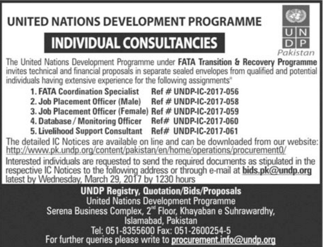 United Nations Development Programme Individual Consultant Jobs