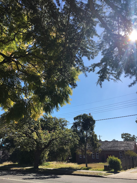A beautiful blue sky Sydney day