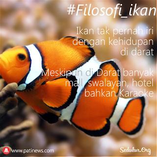 Filosofi Ikan, Tak Pernah Iri dengan Kehidupan di darat