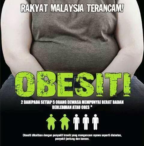 Jangan Sampai Obesitas Ya, Gengs!