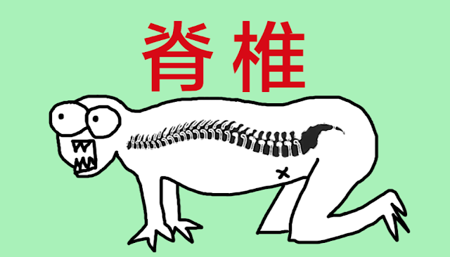 好痛痛 脊椎 脊髓 椎間盤