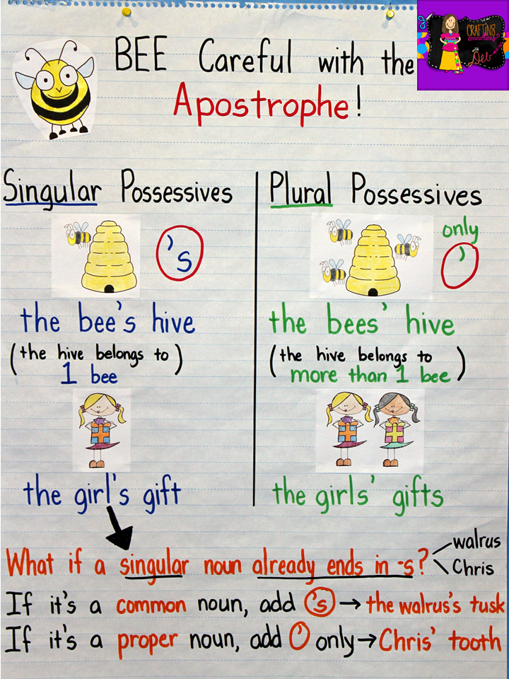Compare and contrast singular possessives and plural possessives with this anchor chart.