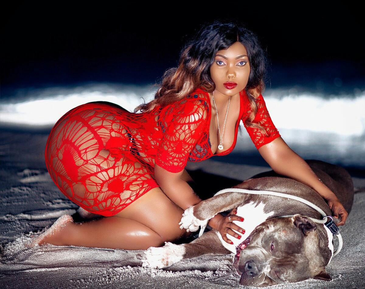 Sanchoka: Sanchi World in red with brown bull dog beach