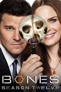 Bones Temporada 12 audio latino