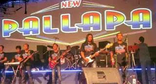 new palapa