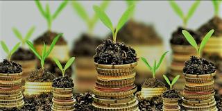 Miliki Uang Rp1 Juta-an, Cocoknya Investasi Apakah Ya?