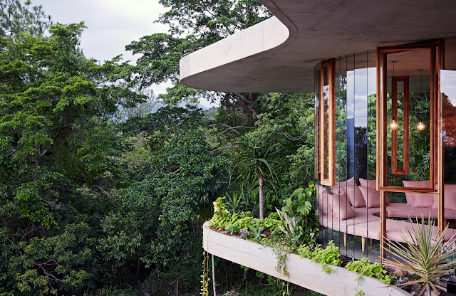 maison verre architecte jungle australie