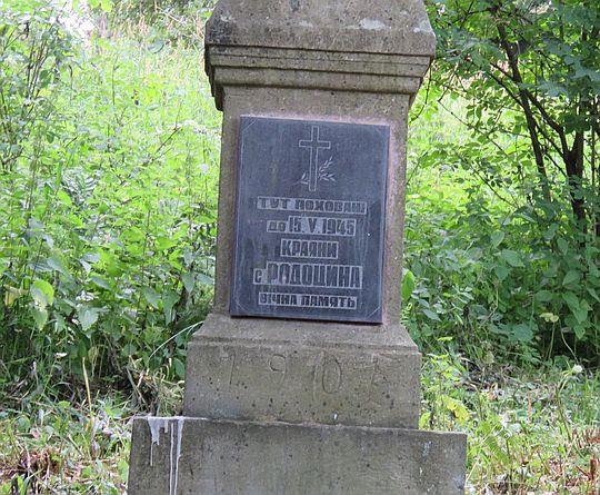 Cmentarz wsi Radocyna.