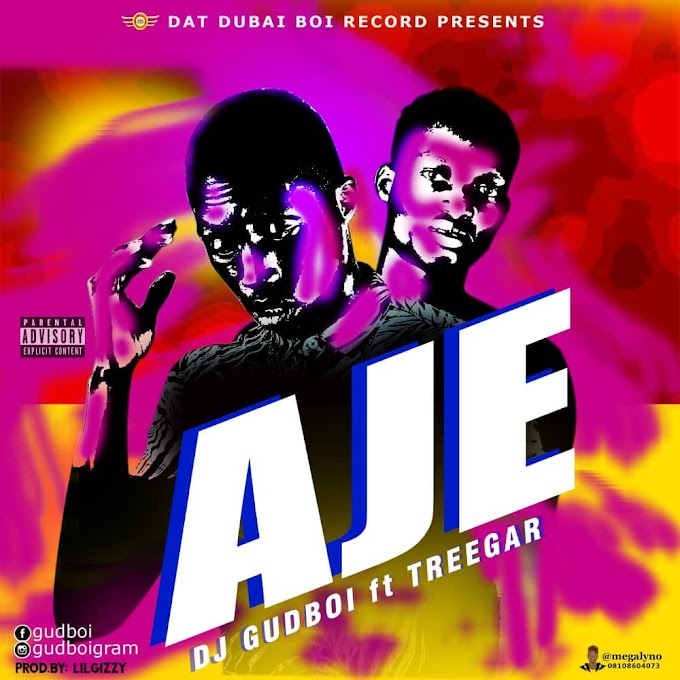 DOWNLOAD AUDIO : DJ Gudboi ft. Treegar - Aje