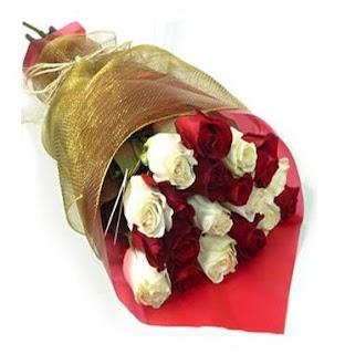 bunga mawar permintaan maaf