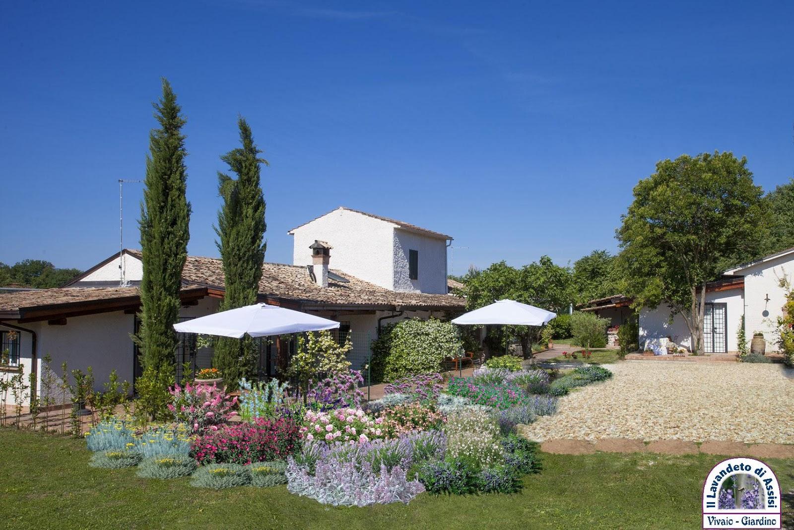 Progetto giardino online for Progetti di giardini