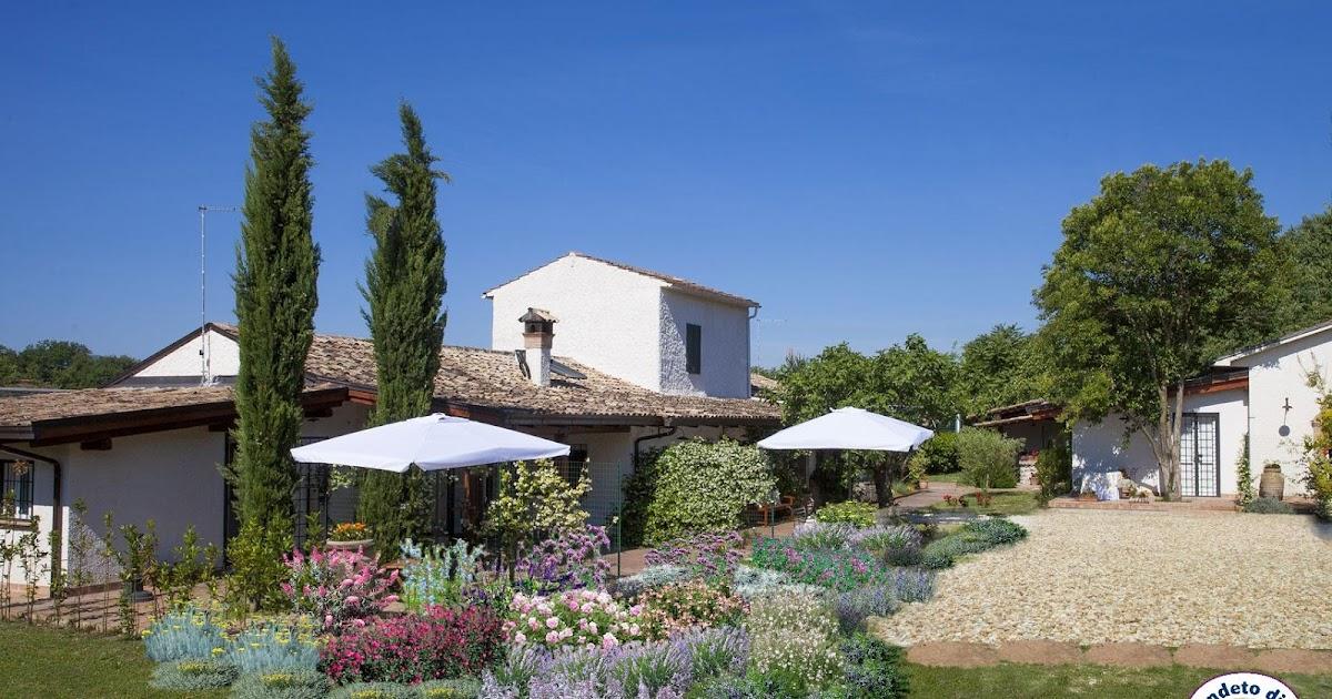 Progetti piccoli giardini e aiuole online for Piccoli giardini ornamentali