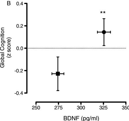 BDNF 認知機能 相関関係