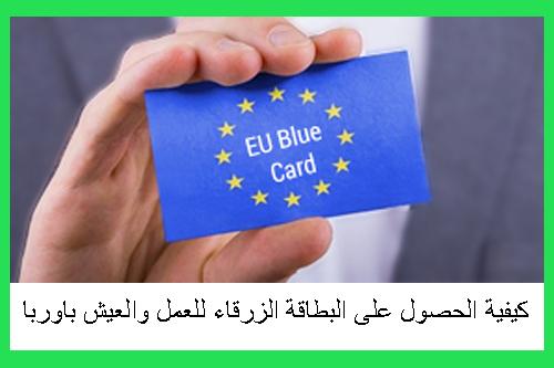 كيفية-الحصول-على-البطاقة-الزرقاء