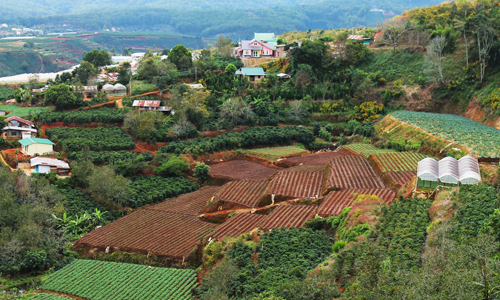 http://www.blogchungkhoan.com/2015/09/mo-tai-khoan-tu-van-au-tu-chung-khoan.html#.VsL5dUCAZFp
