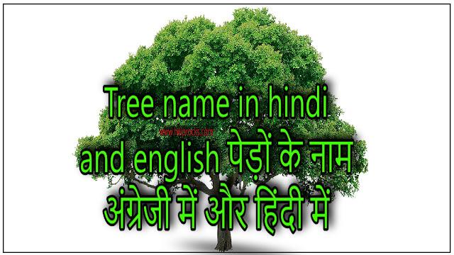Tree name in hindi and english पेड़ों के नाम अंग्रेजी में और हिंदी में