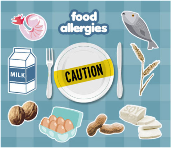 Food Allergies And Ear Infections In Cats