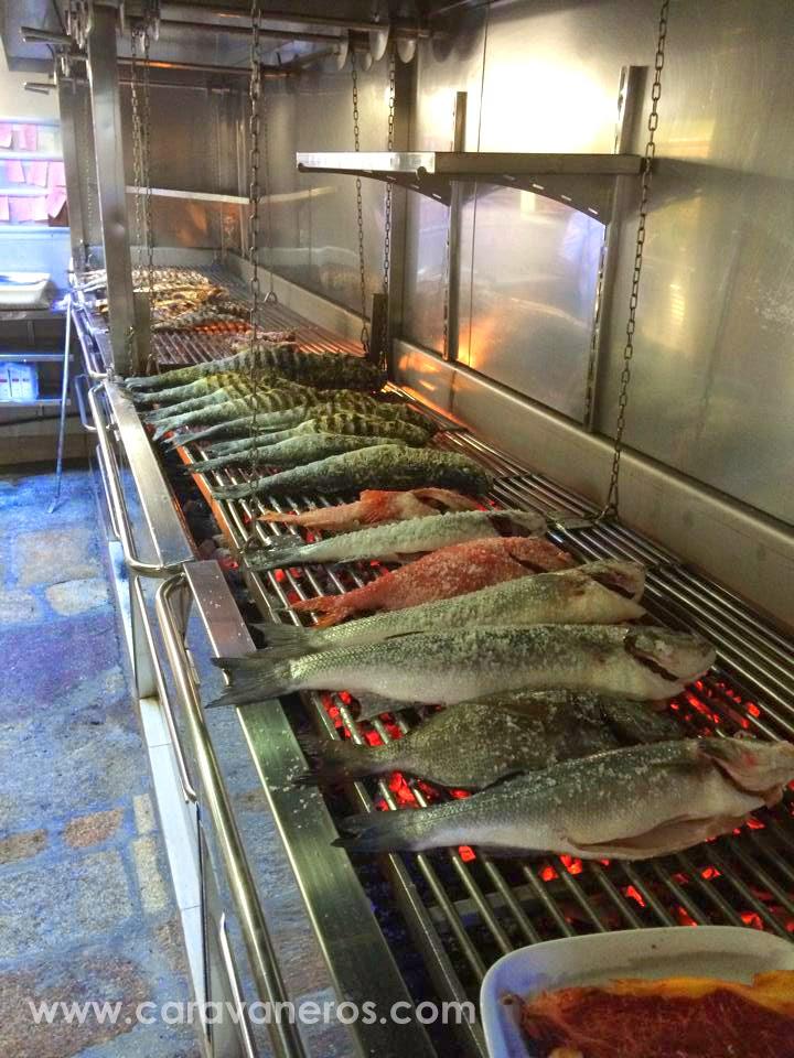 Foto de las Lubinas del Restaurante Tira de Cordel | caravaneros.com