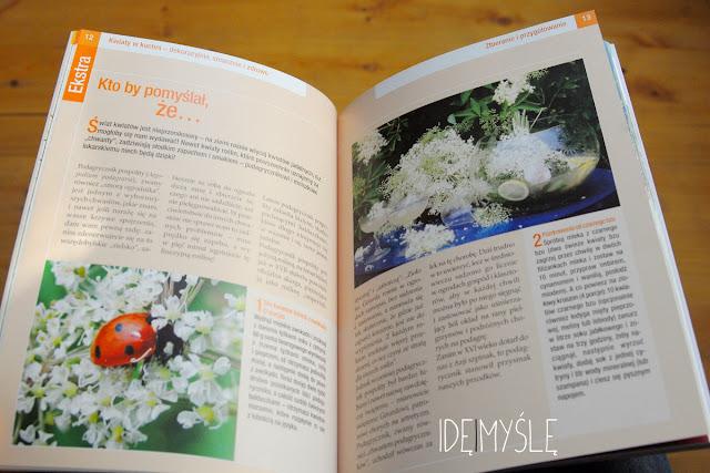 dzikie kwiaty jadalne, jadalne chwasty, kwiatowa książka kucharska, ursel bühring