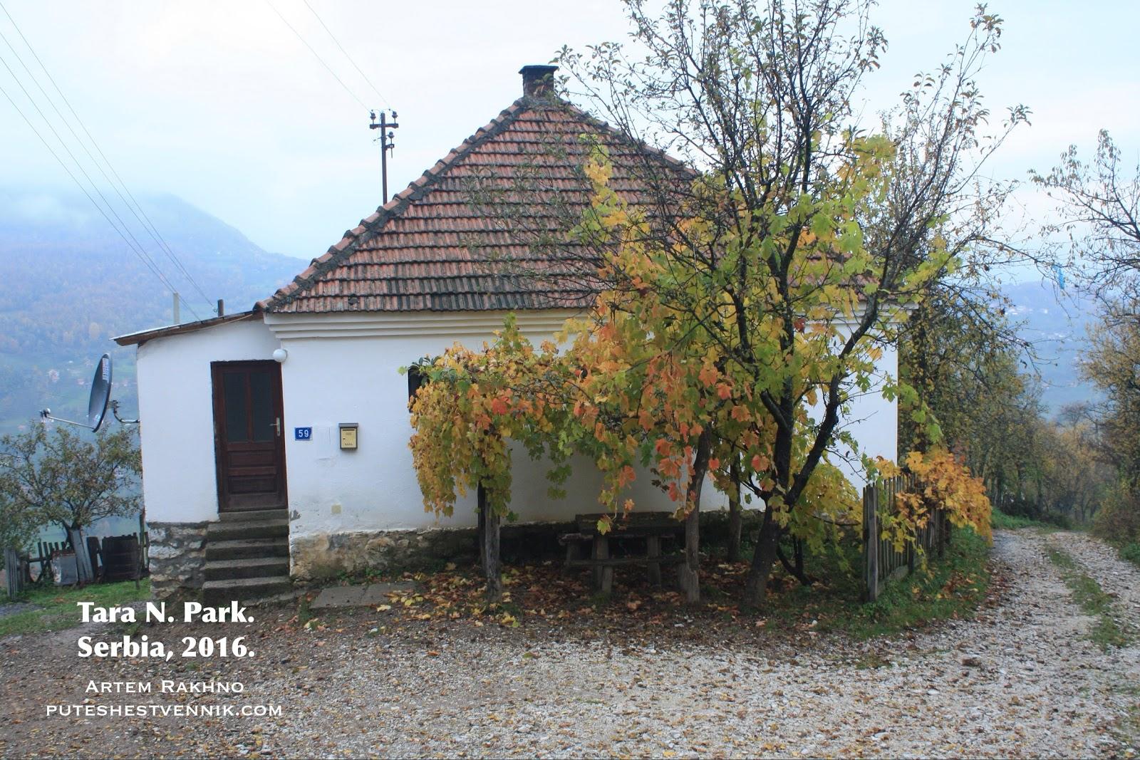 Деревенский дом и осеннее дерево