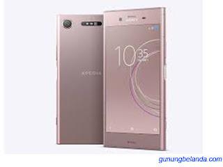 Cara Flashing Sony Xperia XZ1 G8341