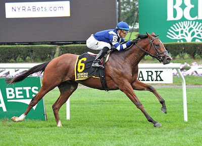 Oscar derby horse