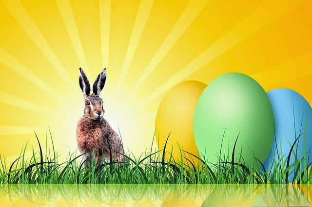 coniglio con uovo di pasqua nella luce sul prato