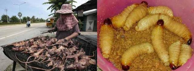5 Makanan Paling Aneh di Indonesia 2019