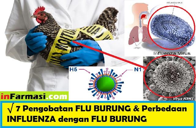 flu burung H5N1
