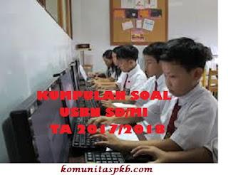 Soal USBN SD/MI Bahasa Indonesia Tahun 2018