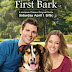 "This Weekend on TV-- Hallmark Welcomes Spring Fling Movies, a New ""When Calls the Heart"" is in store, plus a New ""Fixer Upper Mystery"" and more!!!"