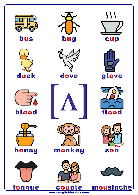 Phonics chart - vowel phoneme ʌ - words and pictures - printable ESL resources
