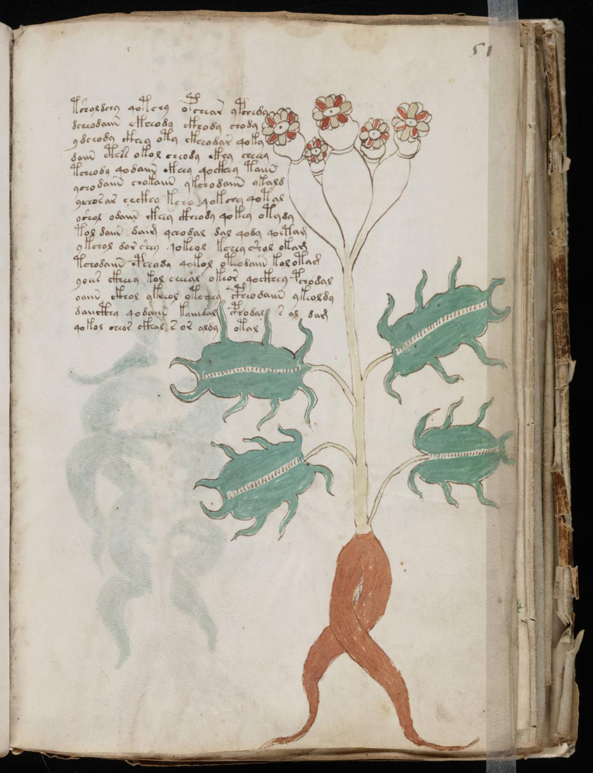 manuscrito099