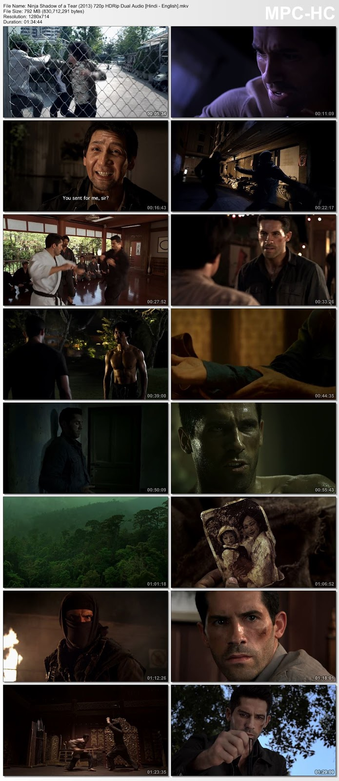 Ninja: Shadow of a Tear (2013) 720p HDRip Dual Audio [Hindi – English] – 800MB Desirehub
