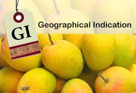 Alphonso mango gets Geographical Indication tag