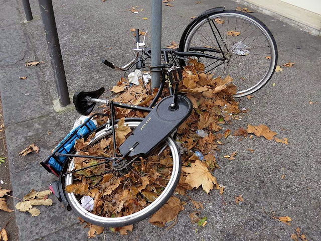Bicycle lying on a bunch of dead leaves, via Gramsci, Livorno